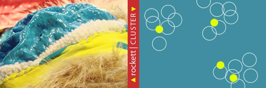 ICG-Web-Banner_RockettCLUSTER_900x300px